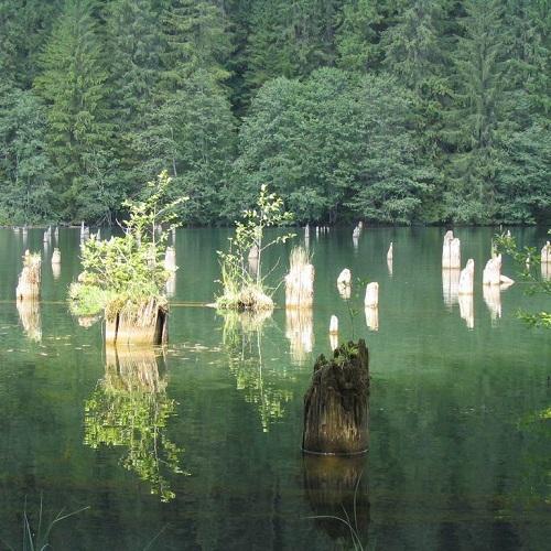 Достопримечательности Румынии. Ведьмино озеро-2