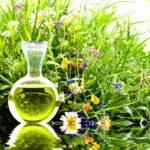 Снятие стресса популярными растениями. Эффективные растения от тревоги