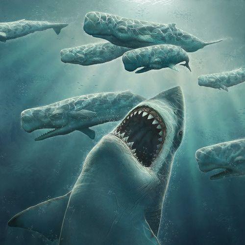 Мегалодон — самая гигантская вымершая акула