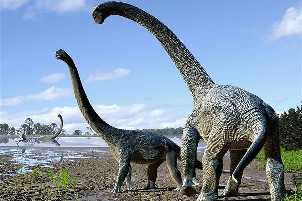 Самые большие животные. Амфицелия
