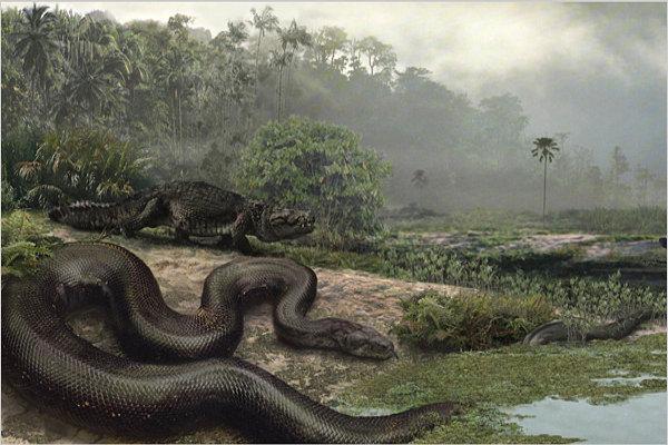 Самые большие животные. Титанобоа