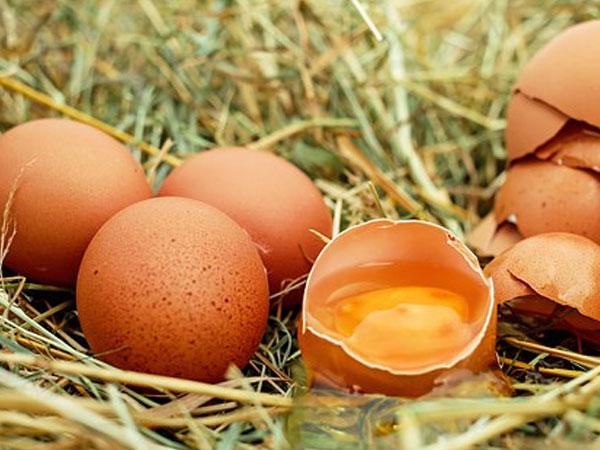 ТОП-10 продуктов для похудения. Яйца