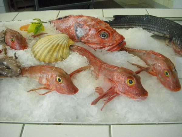 ТОП-10 продуктов для похудения. Рыба и морепродукты