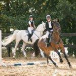 Конный спорт. Соревнования на лошадях