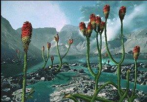 Первые растения на Земле. Риния