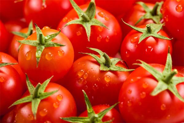 Польза и вред помидоров. Уникальные свойства