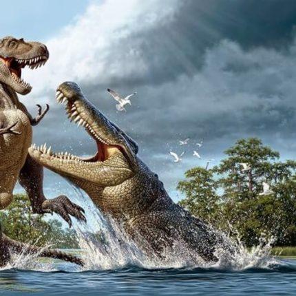 Самые огромные животные в мире, по сравнению с собратьями